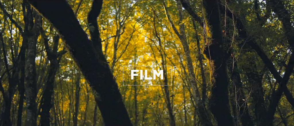 Film(s) réalisé par l'Agence créative Chipo y Juan - Abri CRO-MAGNON